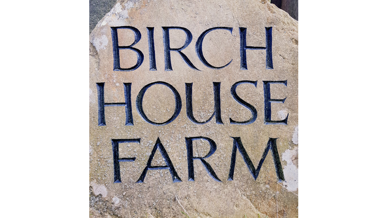 Welcome to Birch House Farm